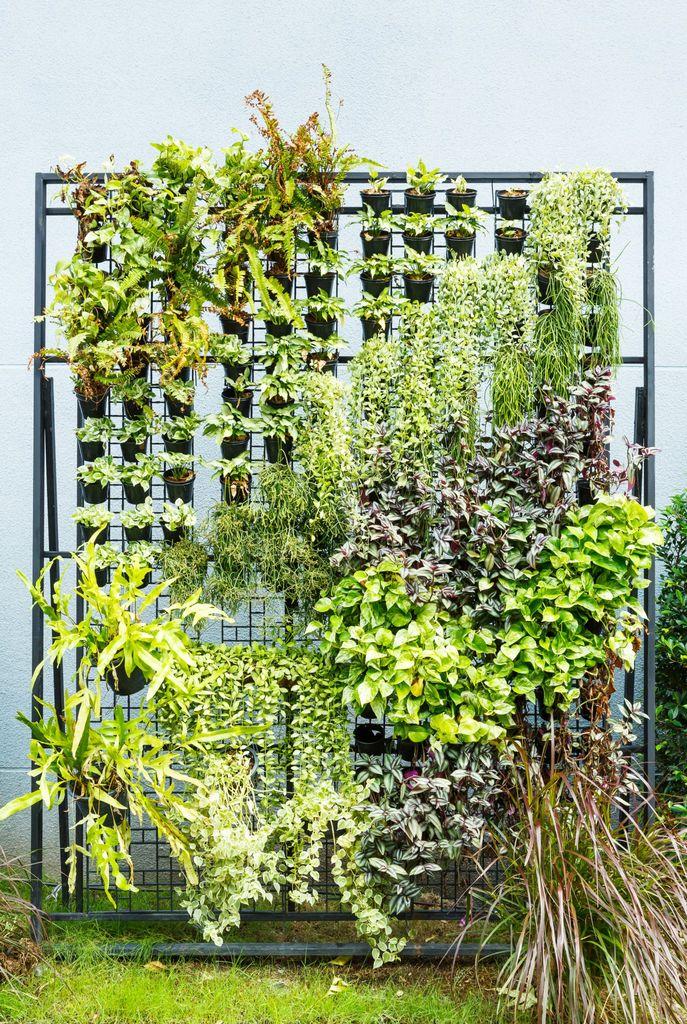Hvordan lage vertikal hage