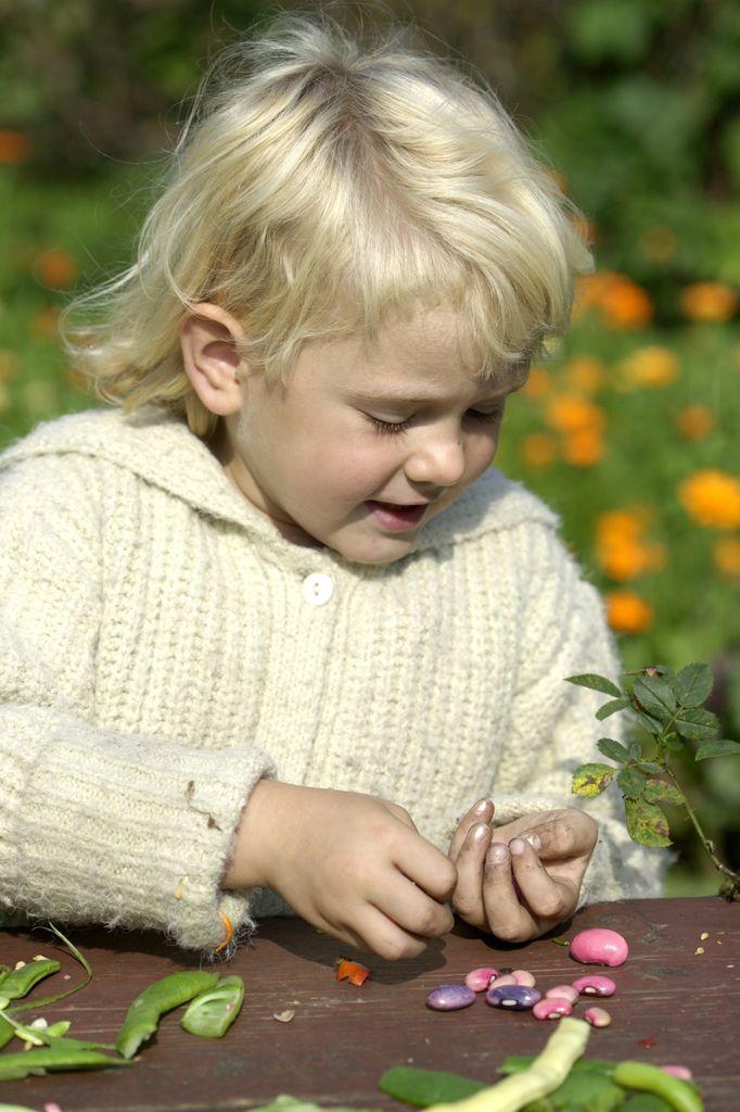Grønnsaker i hagen. Barnas kjøkkenhage.