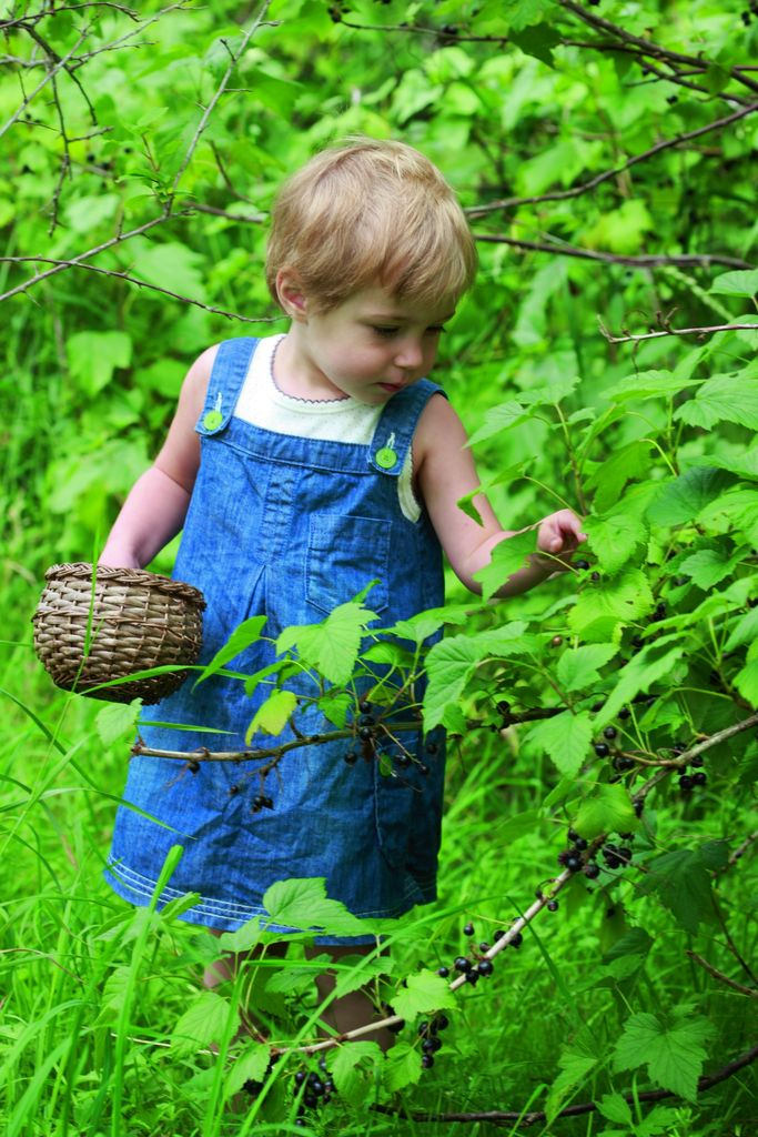 Bær i hagen, barnas kjøkkenhage.