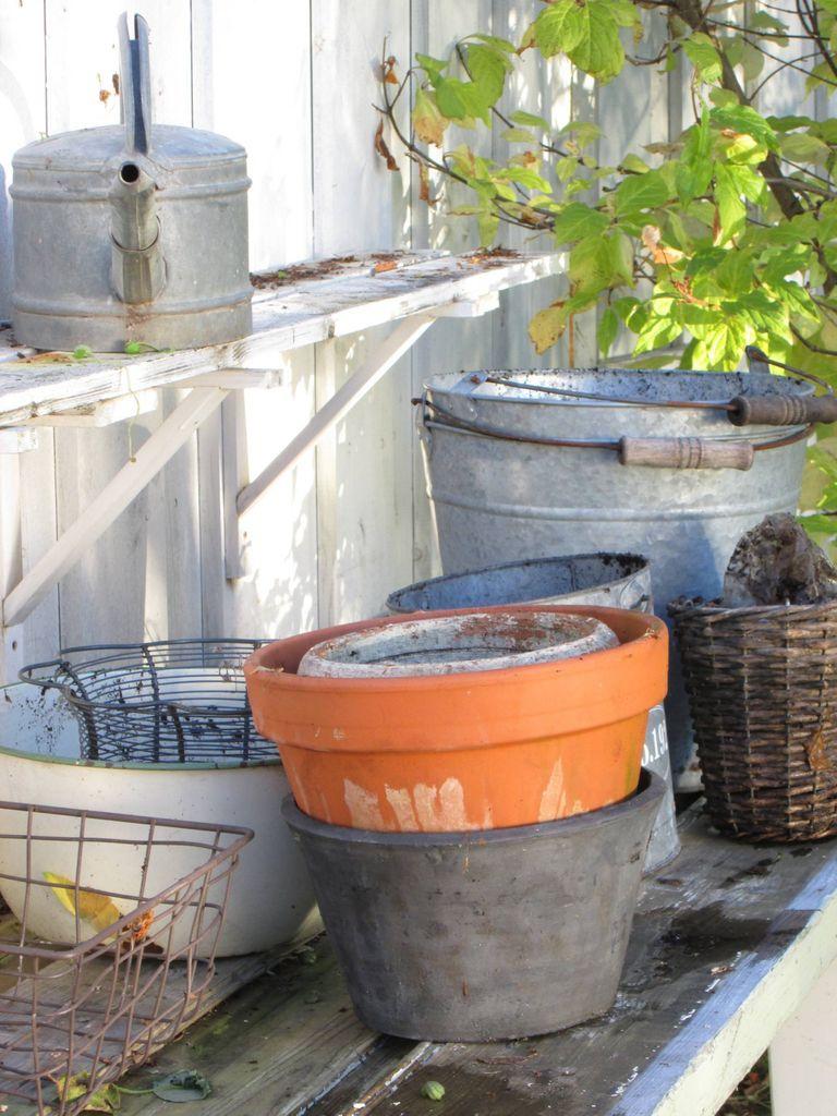 Tips til hvordan du kan gjøre hagen vinterklar.
