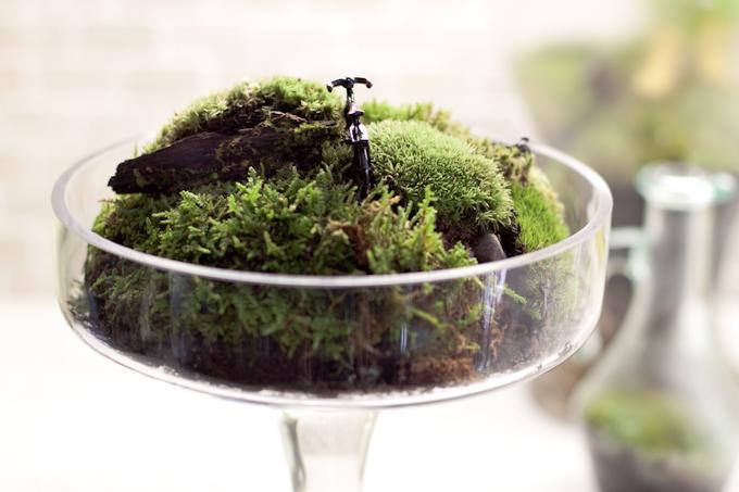 Du må kanskje riste litt i mosen for å få av overflødig jord under den. Bildet er fra blog.thenavarros.ca. Det står en miniatyrsykkel til pynt på toppen av mosen.
