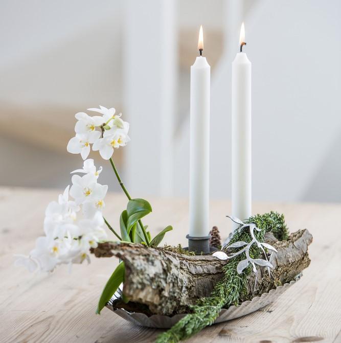 Orkidéer er nå på topplista over solgte juleblomster i England. Foto: floradania.dk