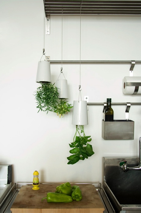 Heng urtene over kjøkkenbenken og lag din egen lille hengende kjøkkenhage. Her er det blant annet rosmarin og basilikum som henger med hodet ned