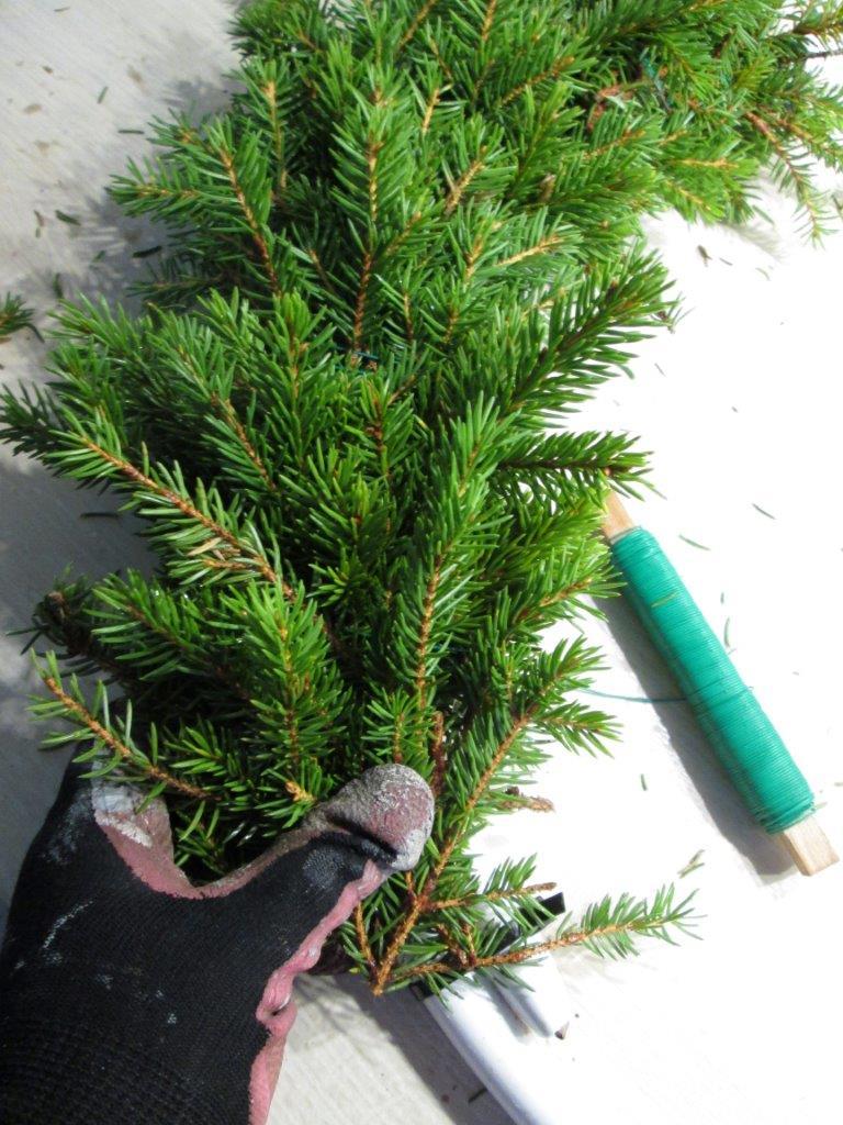 Noe av den fineste julepynten er den naturlige pynten. Man kan lage mye fint av gran og kongler. Slik lager du en fin grankrans.