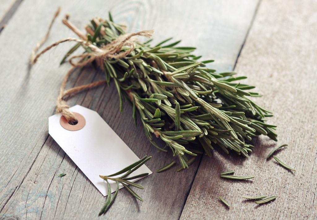 Det er ikke bare mat du kan bruke rosmarin til, og med de nålelignende bladene som kan minne om granbar, er denne urten en grønn og vakker måte å bringe smak og duft inn i hjemmet i adventstiden.