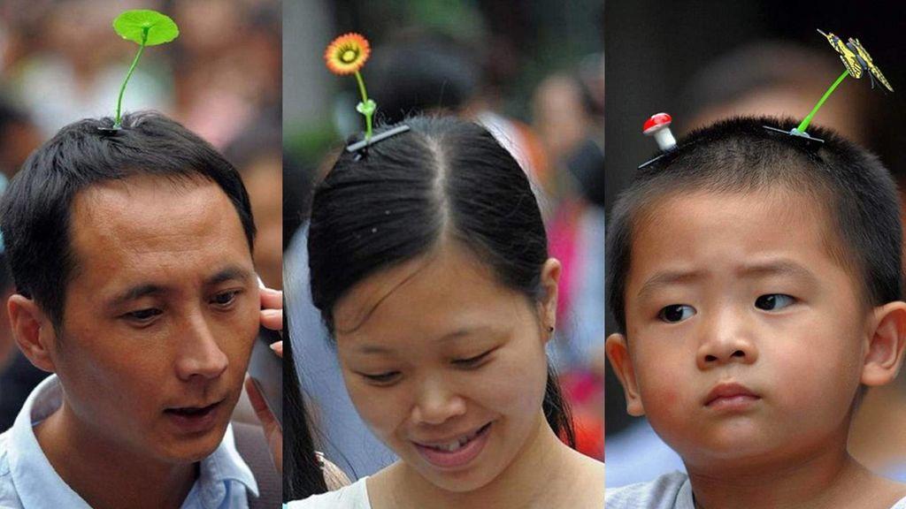 Sprout Couture er eksklusiv (?), kinesisk mote, kunstige blomsterspirer på hårspenner, som gir inntrykk av at det vokser blomster rett ut av hodet.