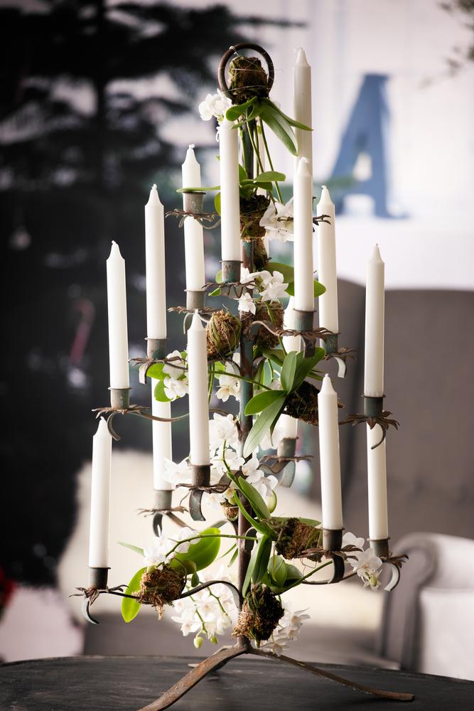 Phalaenopsis, eller orkidé om du vil, er en av julens mest solgte juleblomster.