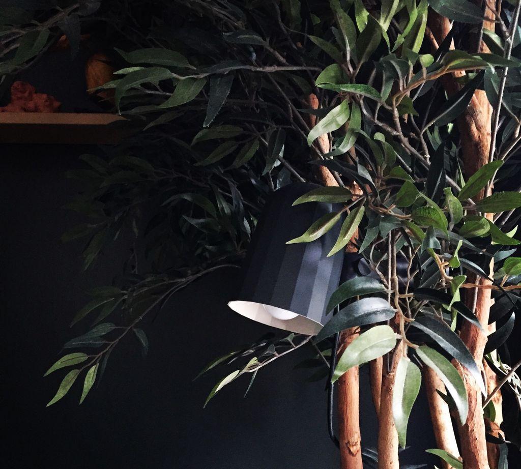 Nå er det vanskeligere enn før å skille ekte fra kunstige planter. Hva skal du se etter når du sjekker kvaliteten på kunstige planter? Det finnes noen retningslinjer, men det viktigste er sunn fornuft.