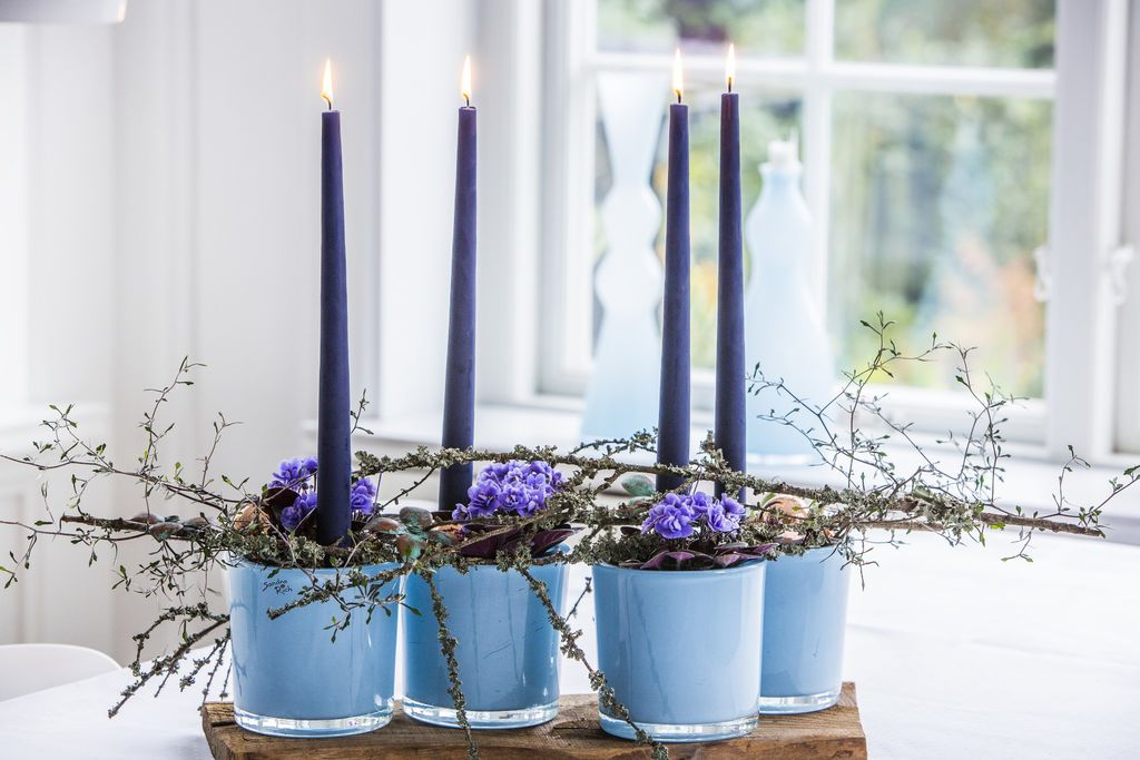 Saintpaulia er fin i adventstiden. Hvorfor ikke bruke lillafargede saintpauliaer til adventsdekorasjon? Foto: floradania.dk