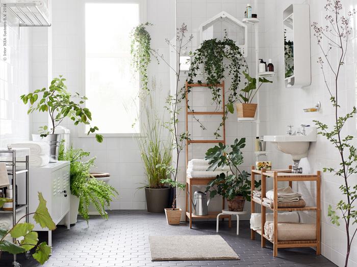 Dette er et illustrasjonsbilde fra Ikea. Har du vindu, vil flere vekster trives på badet ditt. Men plantene under vil også trives på bad uten vindu.