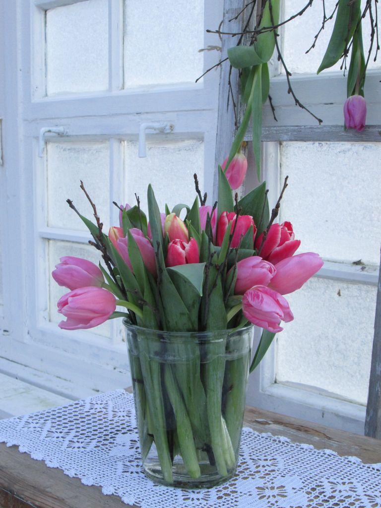Her kan du finne tips til hvordan du på en kreativ måte kan dekorere med tulipaner.