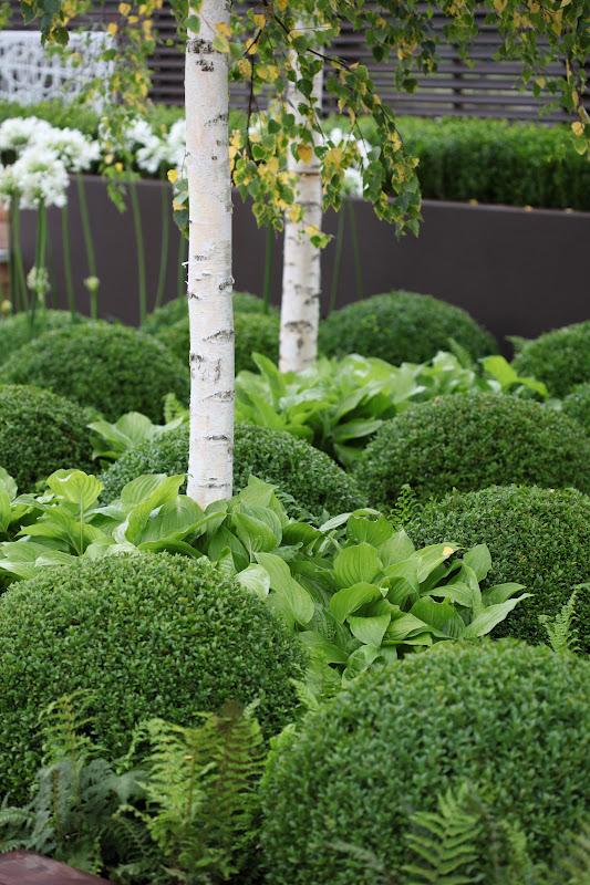 Samplanting betyr å plante sammen. Hvilke planter passer sammen? Det er jo gjerne sammen med andre, at plantene virkelig kommer til sin rett.