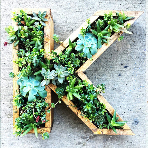 Plant i høyden hvis du har liten plass. Her er fem forskjellige hagevegger.