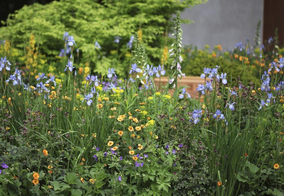 Alt som er gjort, er godt. Så er det bare å glede seg til det begynner å spire og gro i hagen. Foto: Kenneth Ingebretsen/gardenliving.no