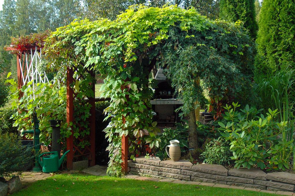 En pergola gjør hagen både mer interessant og skaper et ekstra rom i hagen. Foto: Colourbox