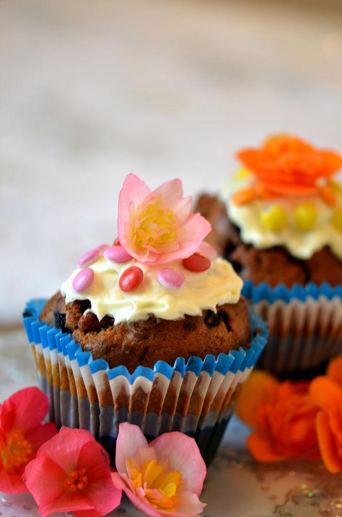 Muffins med fargerike knollbegonia blomster