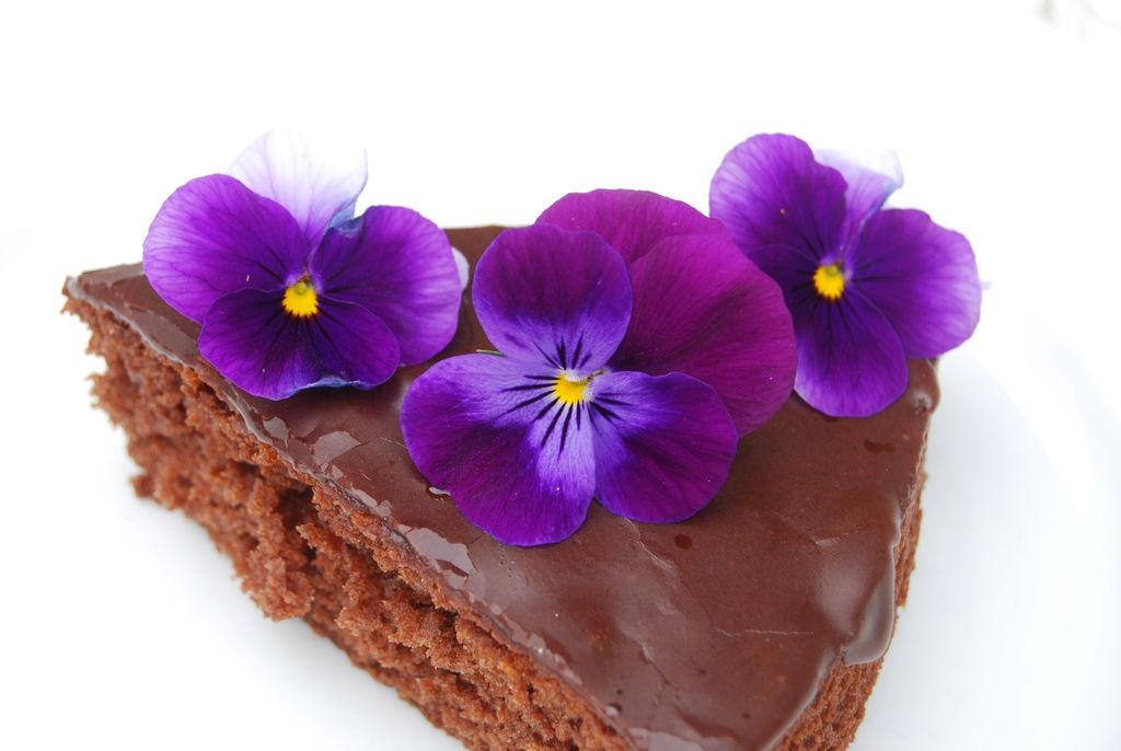 Sjokoladekaeke med fiolette stemeorsblomster blir delikat og elegant