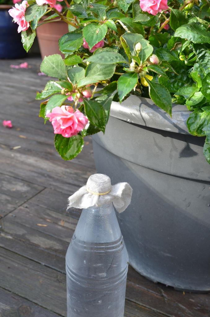 5-vanning_flaske_krukke_terrassen 16.09.2013 16-33-50