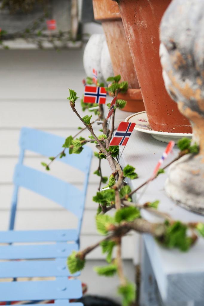 Tips til hva du kan pynte med i hagen på 17.mai.