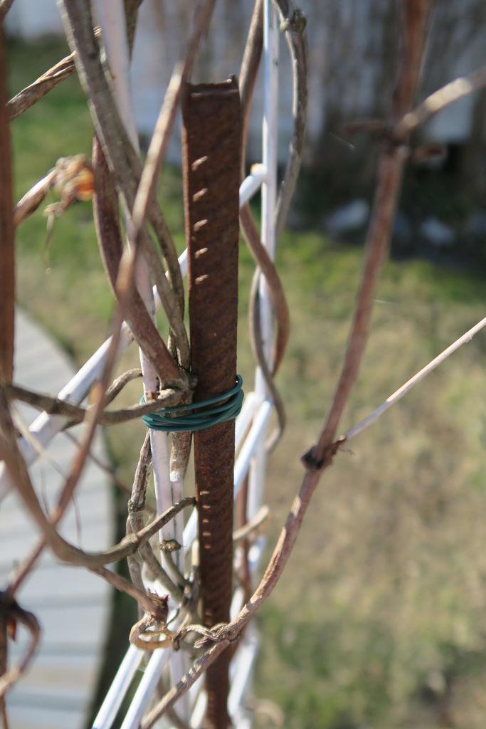 Se hvordan du kan bruke armeringsnett for å lage en hageportal.