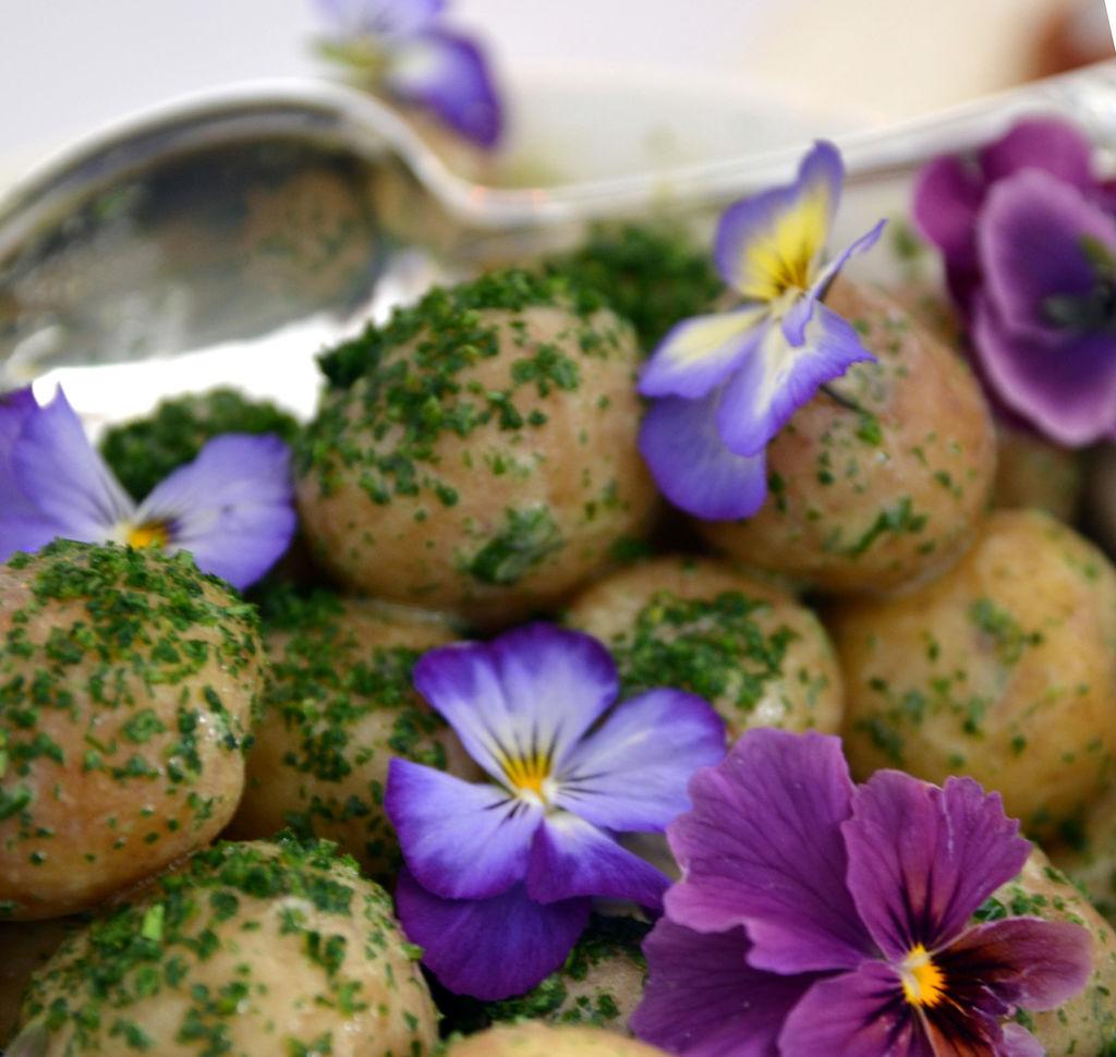 Visste du at du kan spise stemorsblomster, georginer, gladioler og storkenebb for eksempel? Pynt maten med vakre spiselige blomster fra hagen!