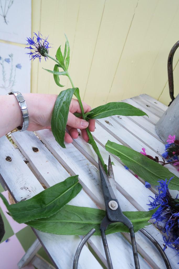 Tips til hvordan buketten du setter sammen fra hagen kan få lengst mulig varighet.