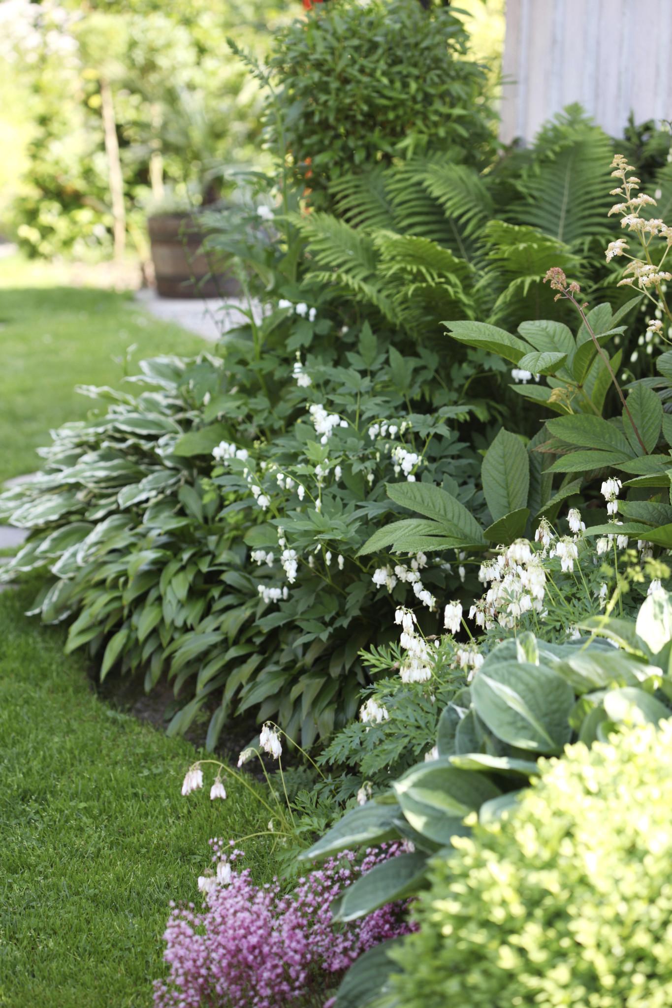 Hageliv & Uterom nr 3 2016 Gardenliving Heite gartnertips