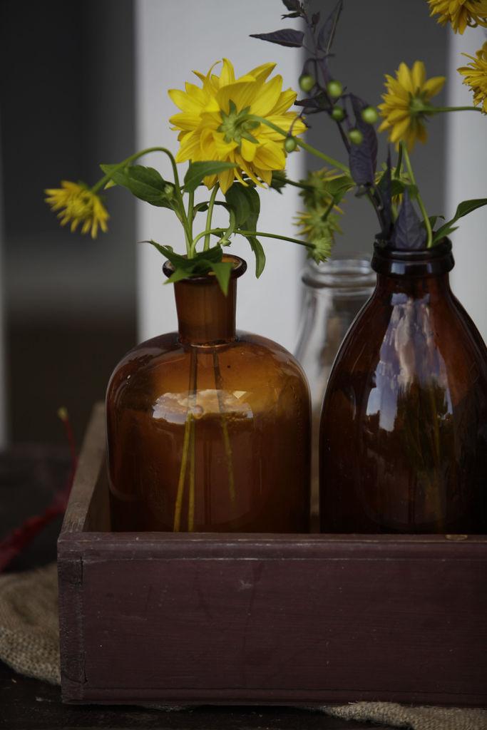Flasker med stauder - Trude Lindland