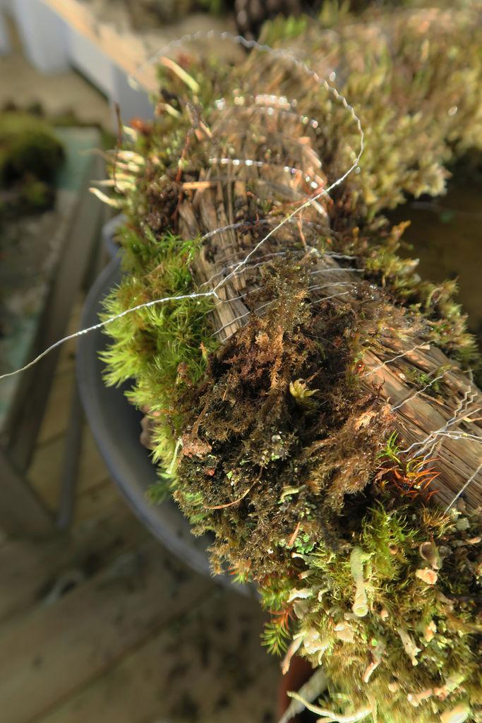 DIY - Mosekrans. Stegvis beskrivelse av hvordan du enkelt kan lage en krans av mose.