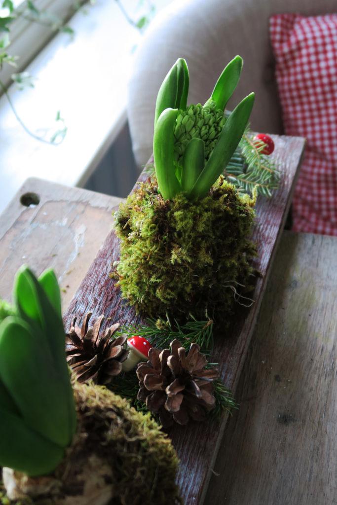 Inspirasjon til hvordan du kan pynte svibler, og sette dem sammen i en fin dekorasjon.