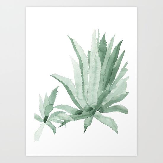 Society 6 agave97247-prints