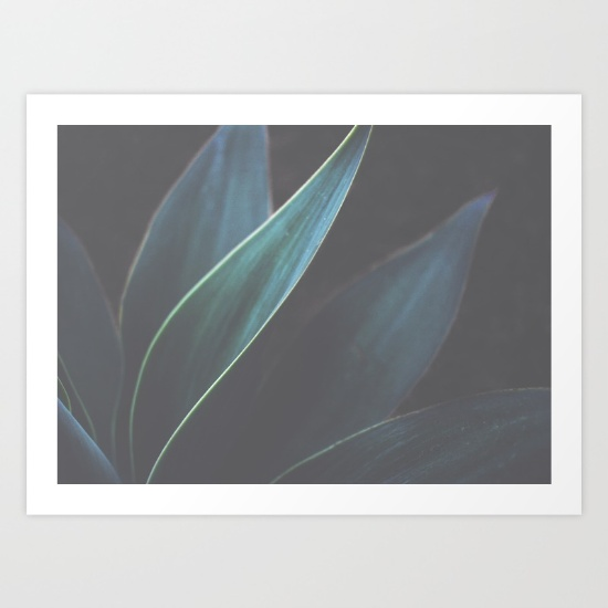Society 6 the-dance-of-plants-prints