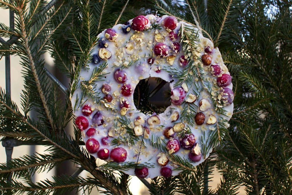 Lag en dekorativ fuglekrans til å pynte opp og lage god stemning blant fuglene ute. Alt du trenger er matfett og nøtter, bær og frø.