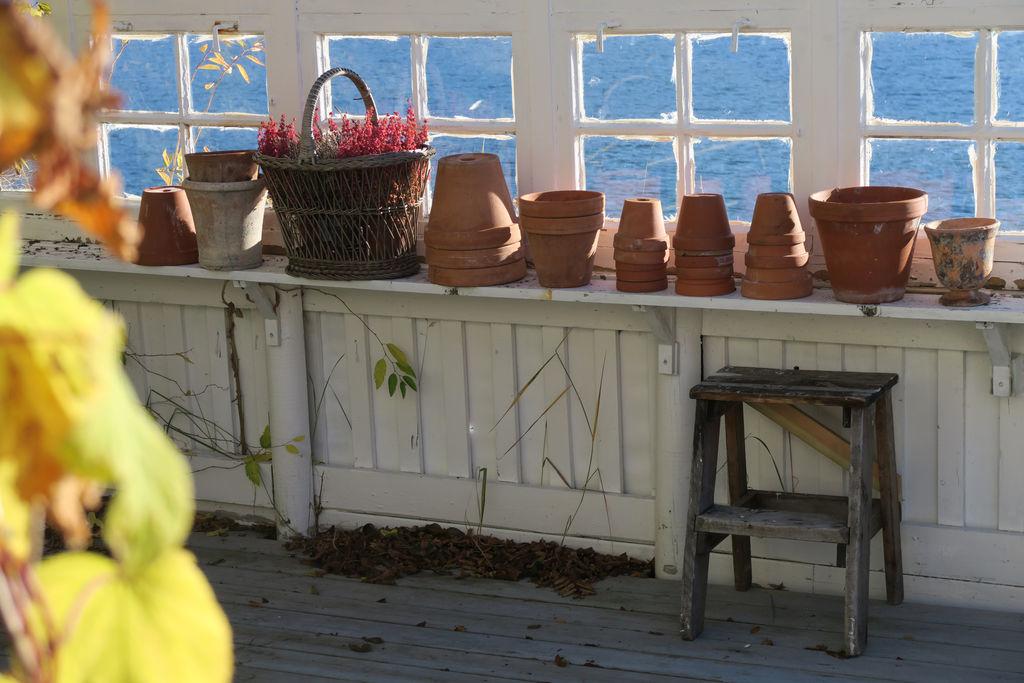 Tips til hvordan hagen kan gjøres klar for vinteren.